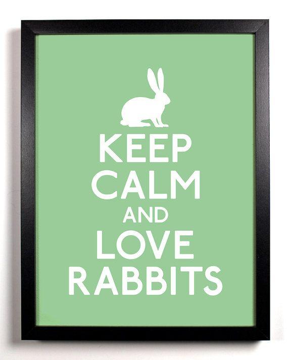 Keep calm and love rabbits!