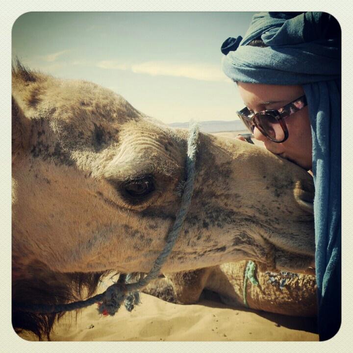 Sahara dessert - the border of Morocco and Algeria. #catstevensthe camel