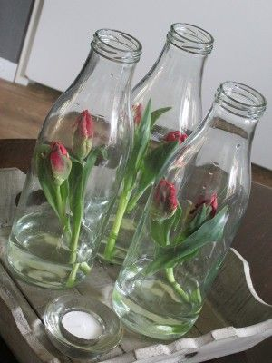 zo leuk! Glazen fles, deze vullen met tulpen en water. Zet de flessen op een theeblad, en tevens een theelichtje.