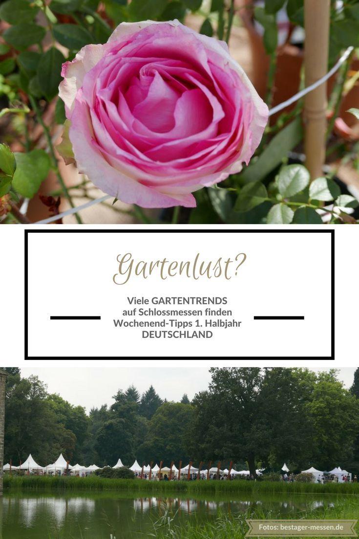 Ungewöhnlich Garten Frühbeetfenstern Uk Ideen - Rahmen Ideen ...