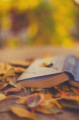 I love the kind of weather when it's cool enough to take a book outdoors and read #Fall #Reading