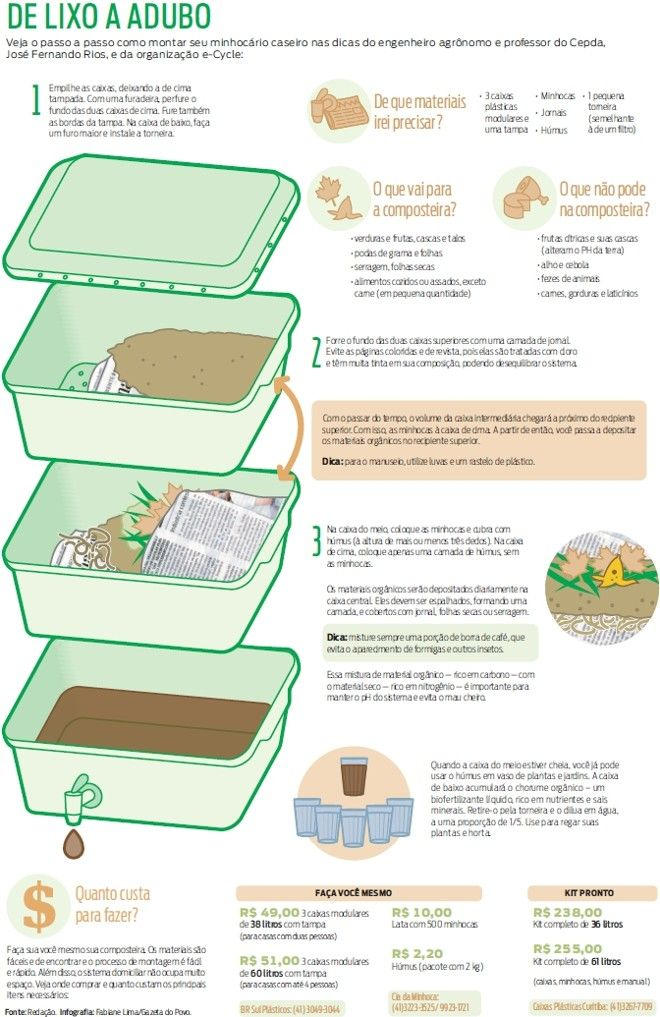 Minhocário caseiro dá destinação ecológica ao lixo