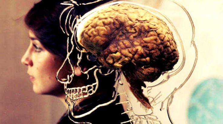 Como a neurociência pode ajudar sua empresa a vender mais - http://exame.abril.com.br/pme/noticias/como-a-neurociencia-pode-ajudar-sua-empresa-a-vender-mais