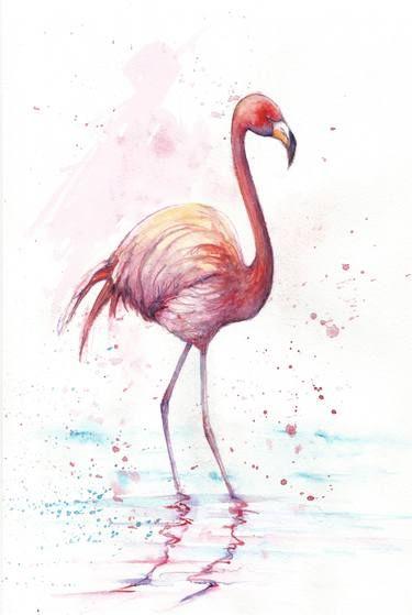 Mejores 26 imágenes de Birds en Pinterest | Pájaros bonitos, Señales ...