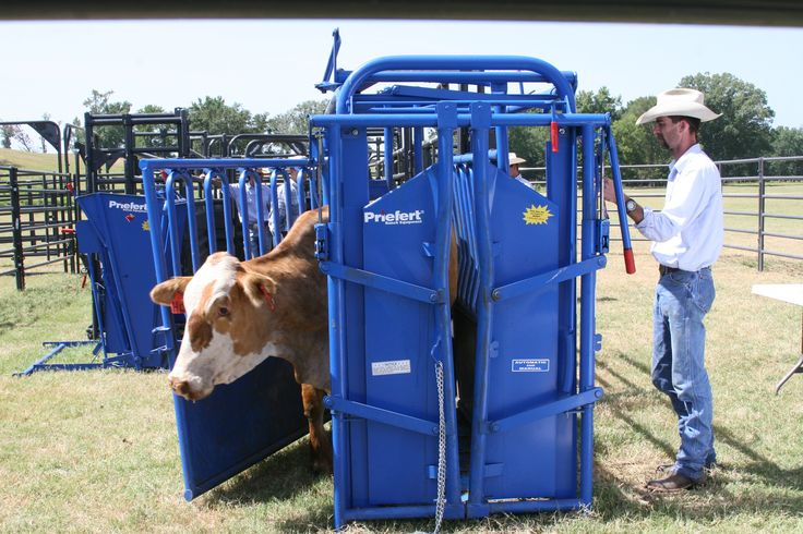 Priefert's number one selling squeeze chute of all time, the S04 has everything to help make cattle working safer, quicker, and easier than ever before.