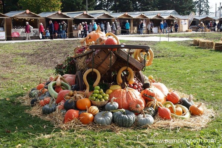 This display of vegetables grown at RHS Garden Wisley, featured some rather lovely pumpkins.