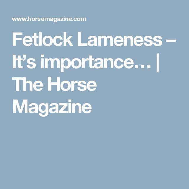 Fetlock Lameness – It's importance… | The Horse Magazine