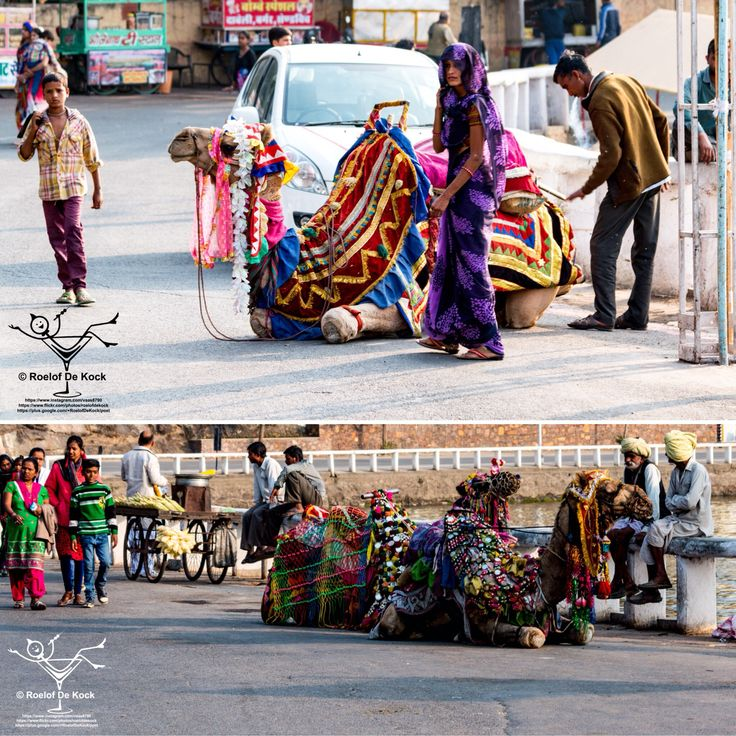 Udaipur, India...Fateh Sagar Lake, colourful entertainment on its shores.  #vaas8790 #incredibleindia #rajasthan #sunset #india #udaipur #travelphotography #travel #fatehsagarlake #instagramrajasthan