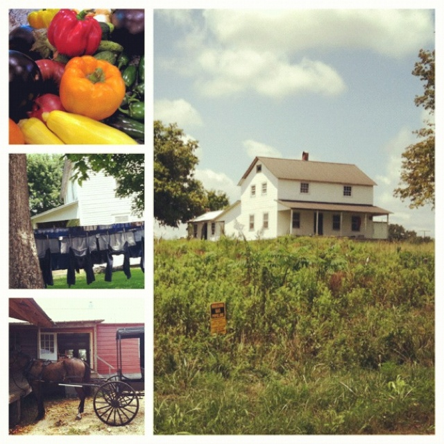Country Kitchen Jackson Tn: 522 Best I Love Tennessee Images On Pinterest