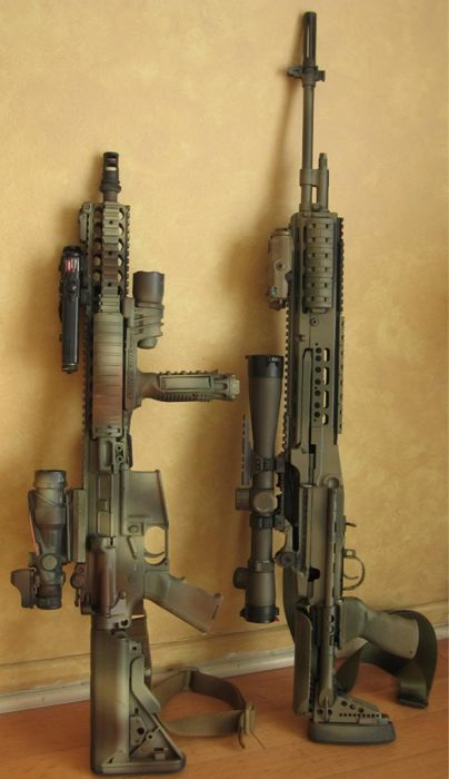 M14 and HK416.