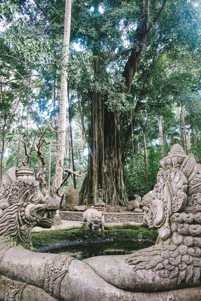 The Sacred Monkey Forrest. - Ubud, Bali - The Londoner