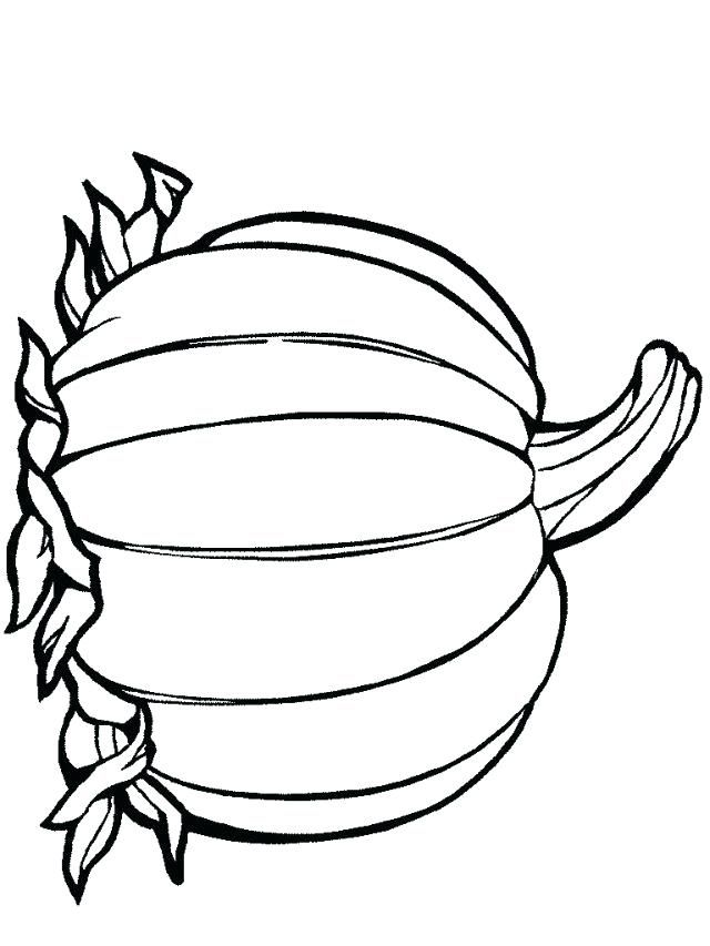 Image Result For Printable Pumpkin Outline