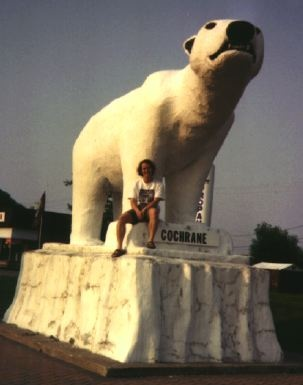 """the polar bear the giants of canada We shouldn't need to see polar bears as sweet and cuddly in order to care about  their welfare  on the internet featuring a polar bear """"patting"""" a dog on its head  in churchill, canada the cbc called the bear a """"gentle giant."""
