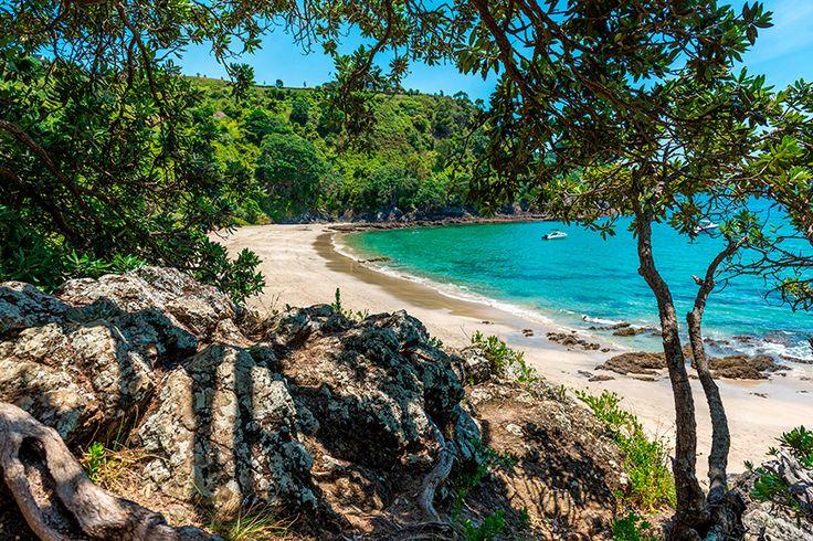 10 lugares imprescindibles que tienes que visitar en Nueva Zelanda