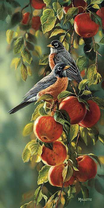September Apples-Robins Art Print by Rosemary Millette : Wild Wings