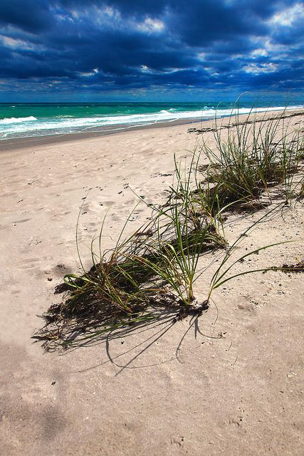 Melbourne Beach,FL. Love this place. Great beaches. Not busy. Restfulness plus!