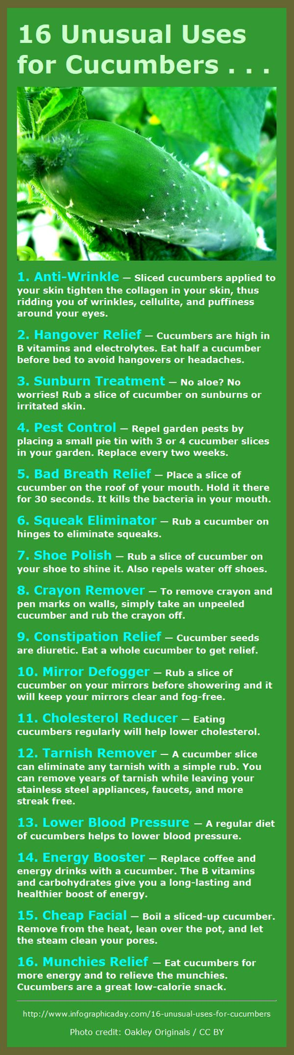 16 Great Uses for Cucumbers – They're not just for eating! - unless you have the munchies. Cucumbers are the best munchies food ever! #Fitness Matters