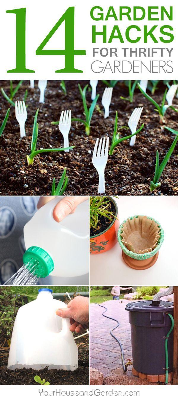 Hacks gardening and gardens on pinterest for Garden design hacks