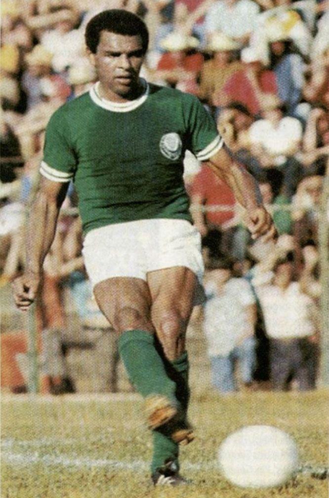 Luis Pereira - Palmeiras -1971