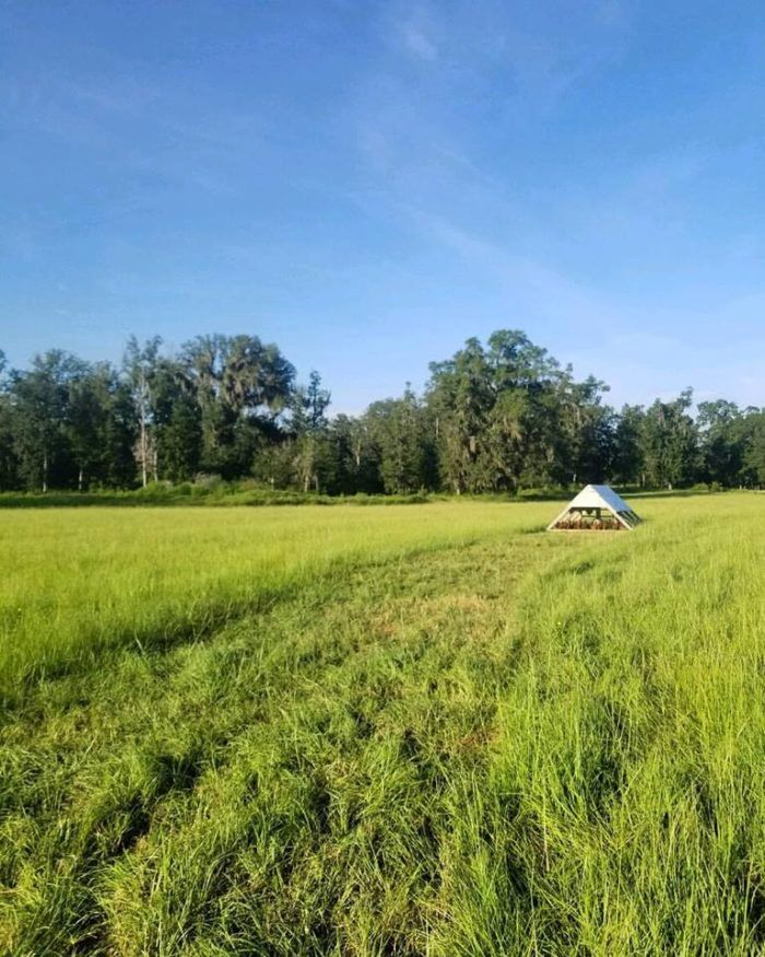 The 140-Acre Farm That Is Quickly Becoming The Reigning