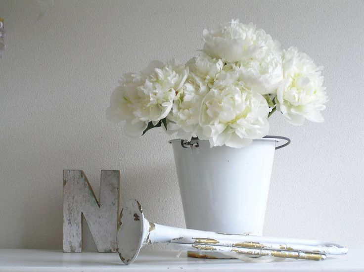 Pastels and Whites: Witte pioenrozen / White peonies