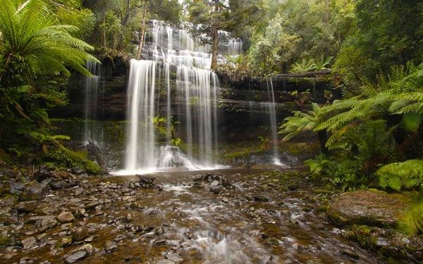 Russell Falls, Mt Field National Park ~ #Waterfall #Tasmania ~ photo by Ben Wong, article for think-tasmania.com
