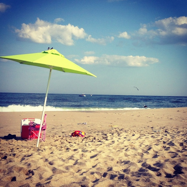 Island Beach State Park Nj: 161 Best Images About NEW JERSEY On Pinterest