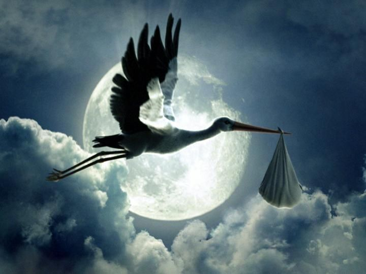 Stork! This is what tonight's moon feels like.