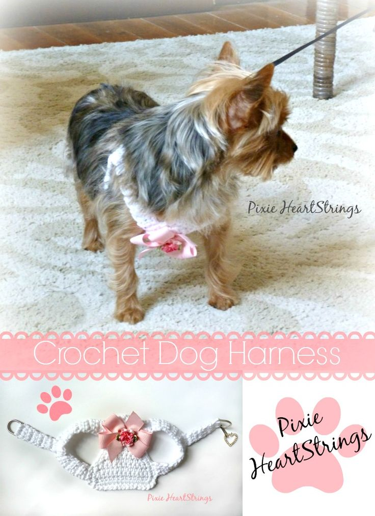 Free Crochet Pattern For Dog Harness : Crocheted Dog Harness for Our Little Rosie... #chorkie # ...