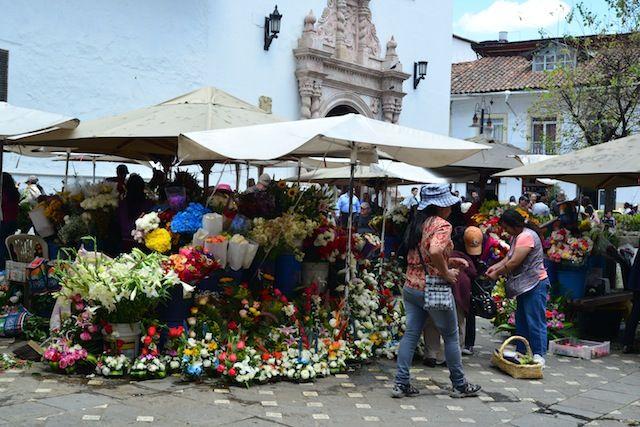 Live Like a Local in Cuenca Ecuador
