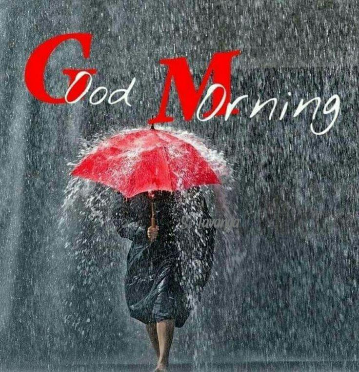 Детьми, дождливое утро картинки красивые с надписью