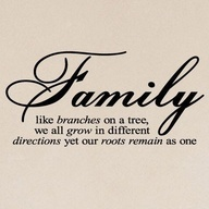<3: Families Quotes, Sotrue, Roots, Wall Quotes, So True, Families Trees, Things, Branches, Love My Families