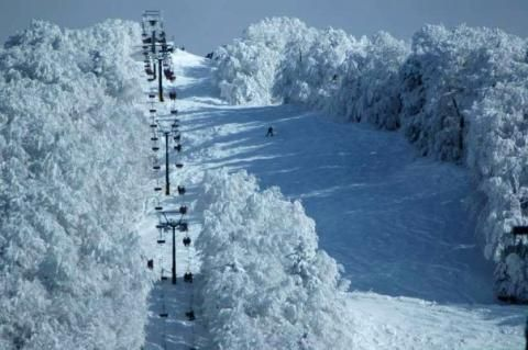 Snow ski during the winter