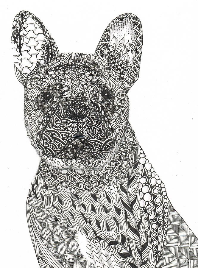 Zentangle Inspired French Bull Dog By Dianne Ferrer Pets
