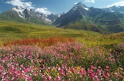 Surprisingly beautiful place I never would have thought of as a destination: Dushanbe, Tajikistan