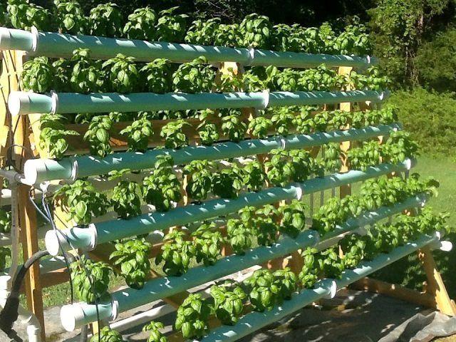The Best Hydroponic System Enjoy Fresh Produce Year Round Hydroponics Diy Hydroponic Farming Hydroponics System