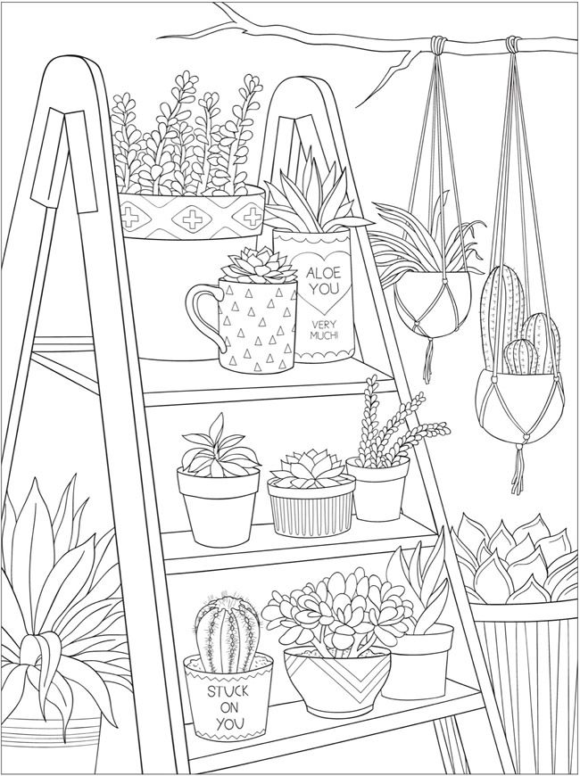 Welcome To Dover Publications Ch Stunning Succulents Coloring Books Coloring Pages Coloring Book Pages