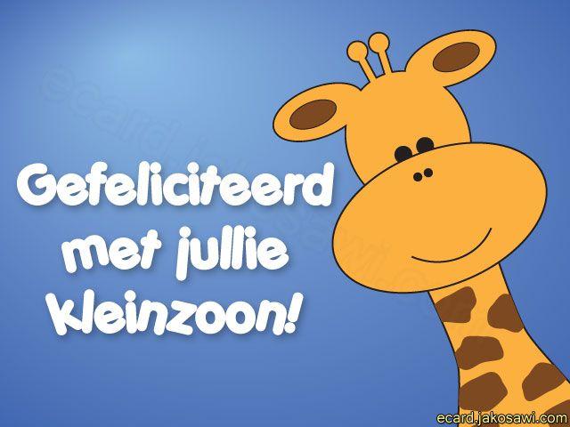 kleinzoon giraf 1401 cartoon giraf gefeliciteerd met jullie kleinzoon