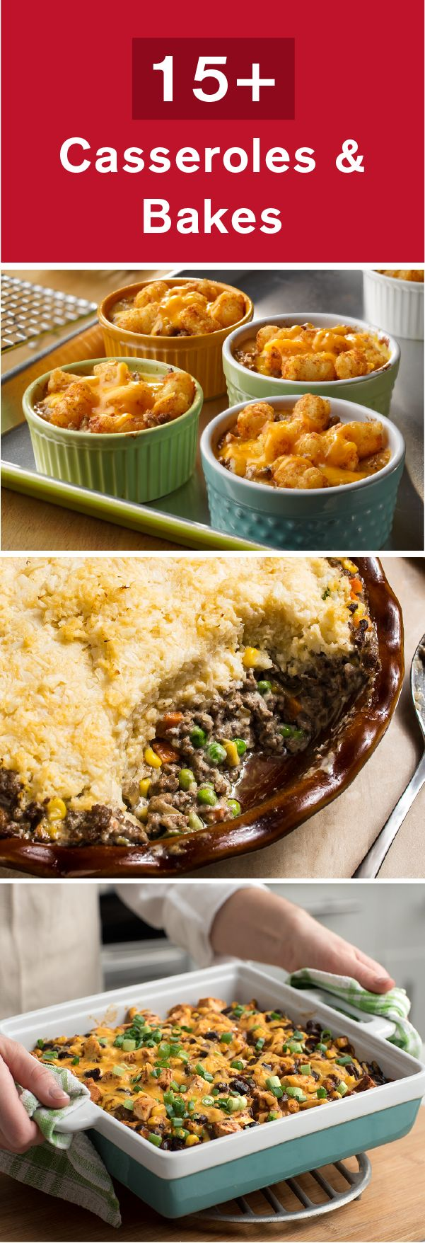 These savory golden-brown creations are simply outstanding! With dinner ideas including, Farfalle and Tuna Casserole, Savory Stuffed Peppers, and Quinoa Chile Rellenos, you'll come back to this collection of 15+ Casseroles and Bakes again and again.