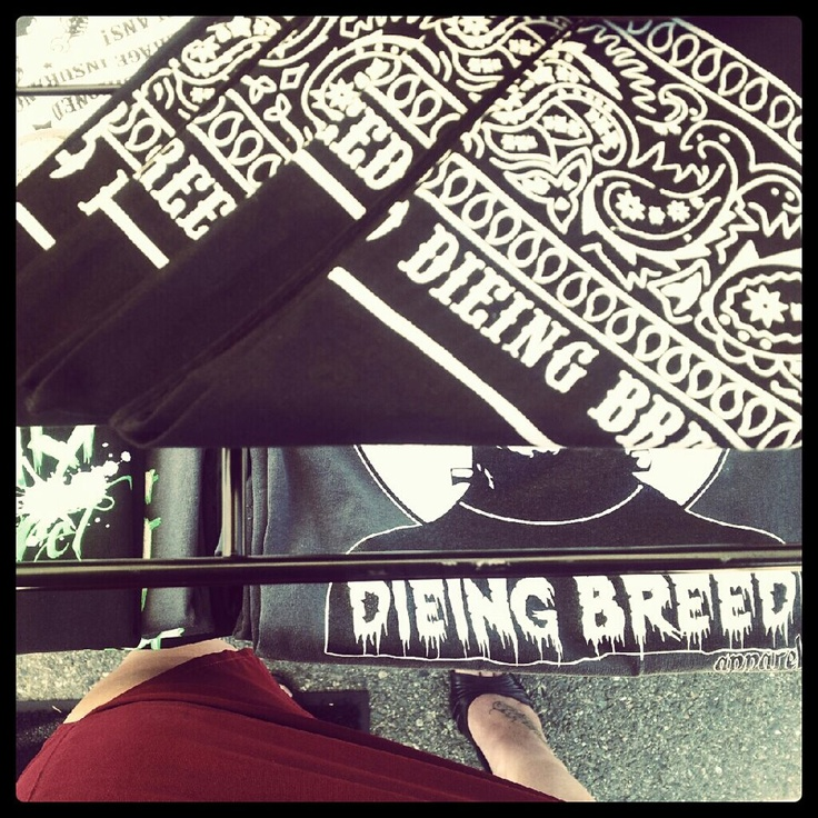 Bandana dieing breed apparel, dieing breed, men's clothing, men's fashion, men's apparel, apparel, rockabilly, rockabilly clothing, 1950's inspired, greaser, greaser clothing