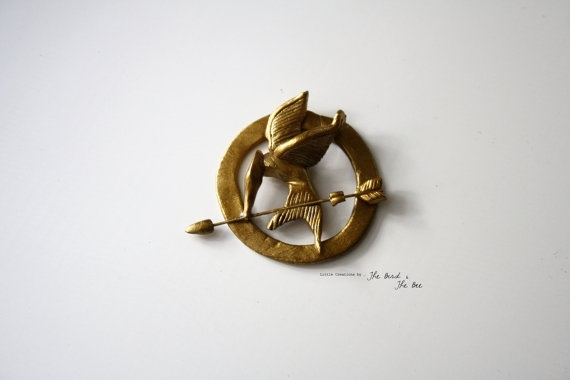 Hand made Hunger Games Pin http://www.pinterestbest.net/Dunkin-Donuts-100-Gift-Card