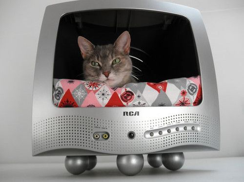 Recycled TV Pet Bed by Lucky Lenore Vintage eclectic pet accessories