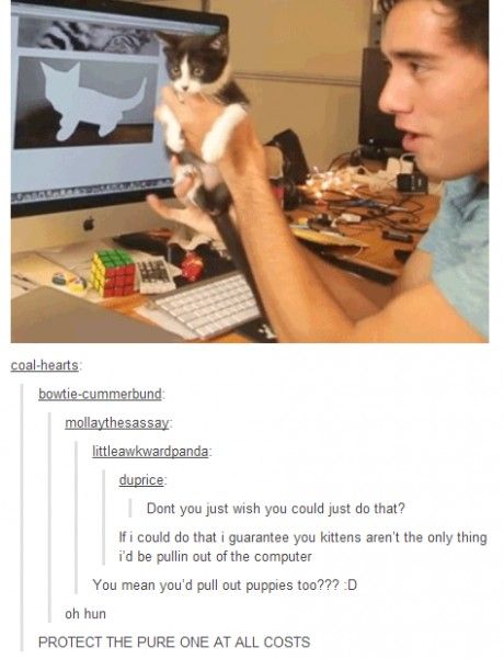 I would pull out a cute guy (admittedly he'd have to be older than the one in this picture) who pulls out kittens.