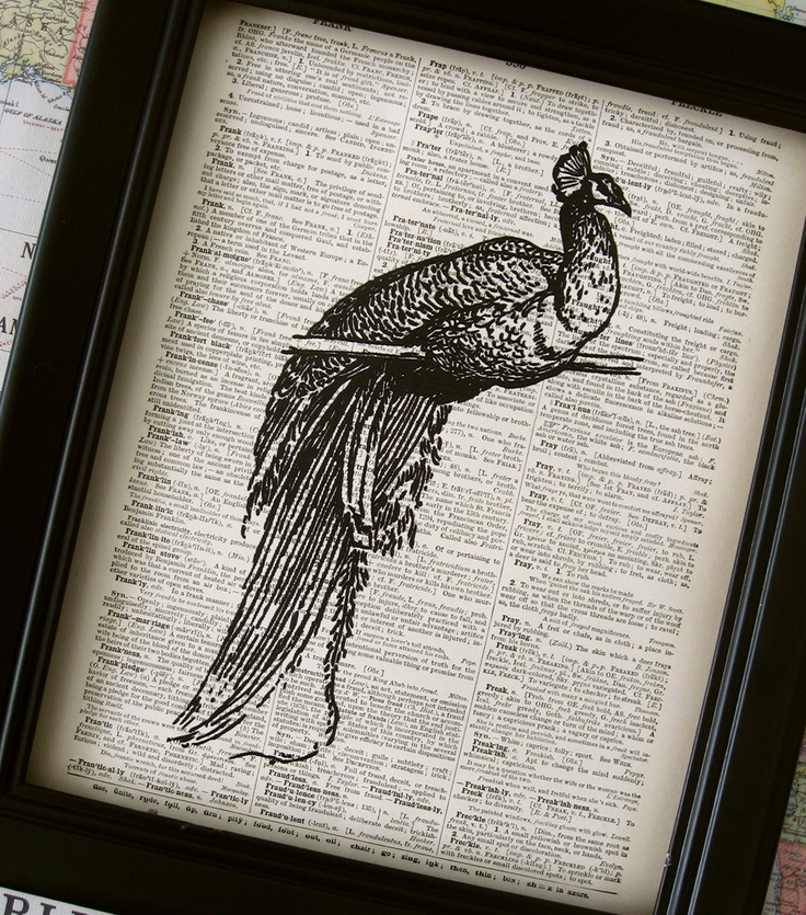 On page, great idea: Black Peacock, Free Ships, Old Books Pages, Books Art, Art Prints, Artsy Ideas, Branches Illustrations, Ships Black, Dictionary Art