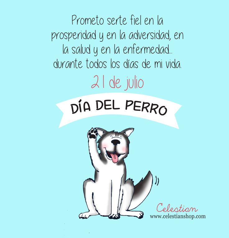 día mundial del perro #dog #díamundialdelperro www.celestianshop.com