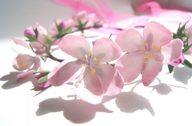веночек яблоневый цвет
