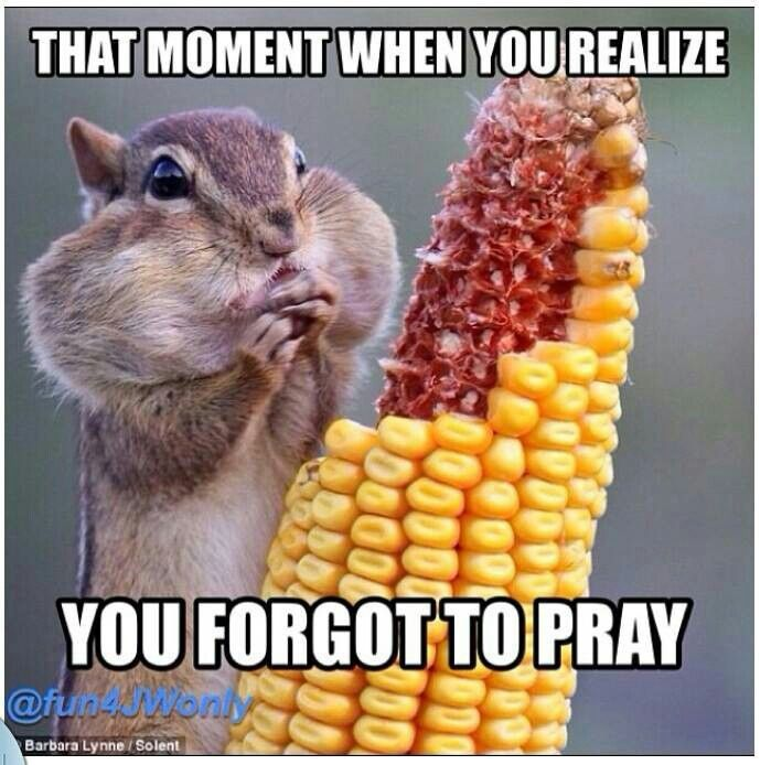 I believe in prayer throughout the day, not just at meals, however, I've been there. Especially when other people start to pray and you're already eating! Awkward!