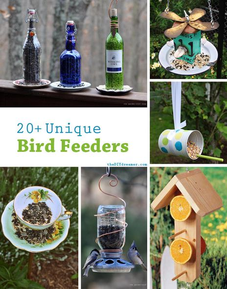 Become an avian fiend and lure in flocks of Northern Maine feathered friends!  We have tons of birds native to the area, and these bird feeders are a great way to encourage visits to your yard!     20+ Unique Bird Feeder Ideas:)