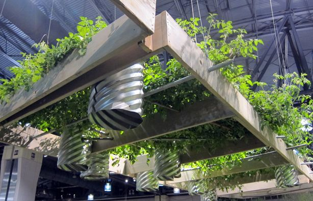 Demonstrating that there are many ways to grow food from for Vegetable garden pergola