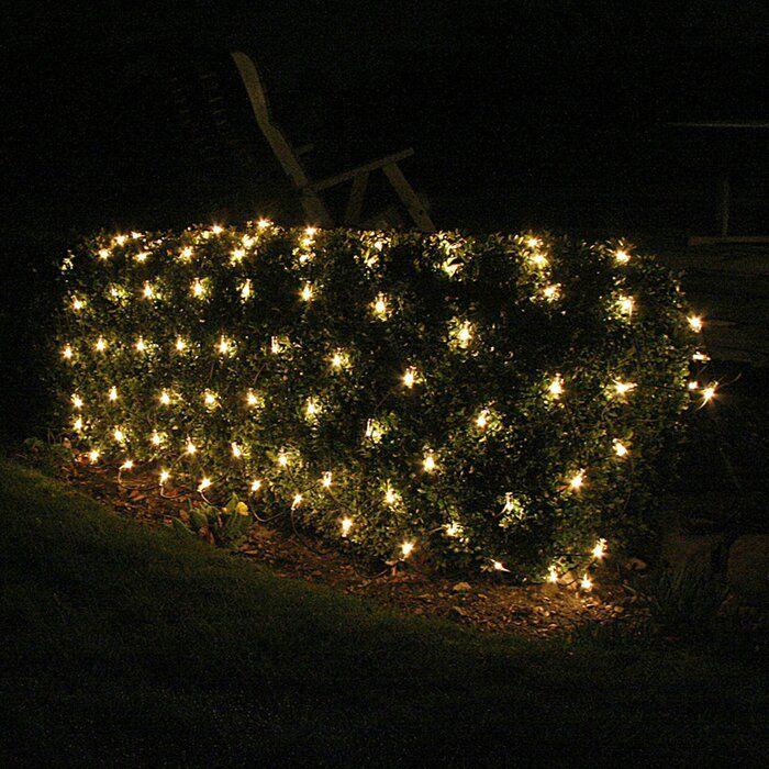 Ts6109 Extendable 204 Light Net Light Christmas Lights Hanging Christmas Lights Net Lights